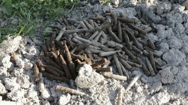 Ce a descoperit un barbat din Salaj in timp ce isi sapa gradina. Autoritatile au izolat imediat zona
