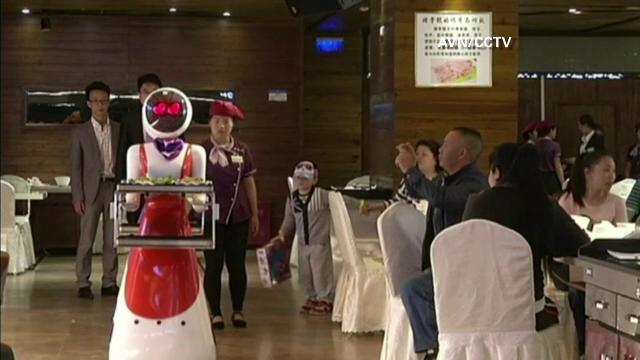 chelneri roboti