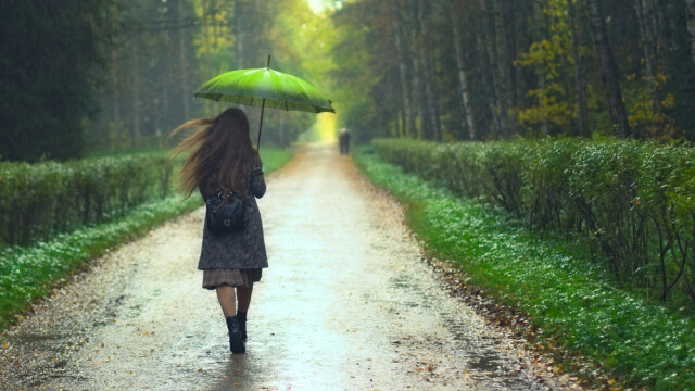 vreme, ploi