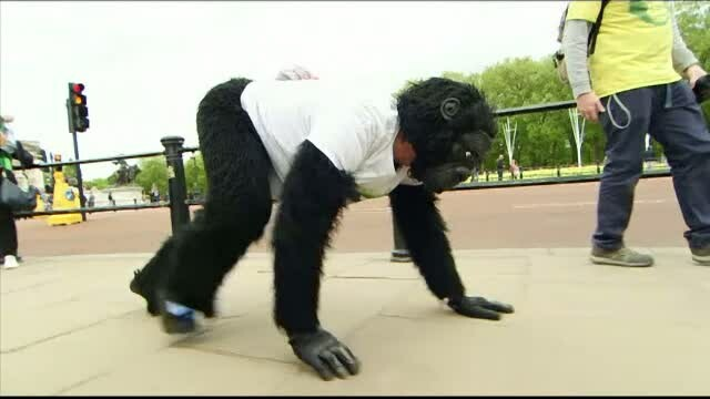 Motivul pentru care a ales sa alerge la maratonul de la Londra intr-un costum de gorila si in patru labe