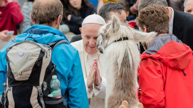 Trei lame, întâmpinate de papa Francisc la Vatican