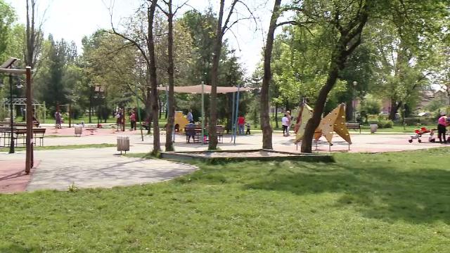 Căpuşele, pericolul nevăzut din parcuri. Multe orașe nu au contracte de dezinsecție