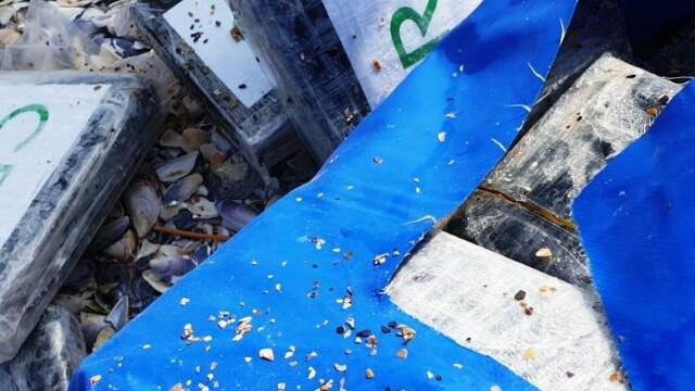 """Dosarul """"Cocaina de la Marea Neagră"""" a fost finalizat. Cum au ajuns drogurile din Brazilia în România - Imaginea 6"""