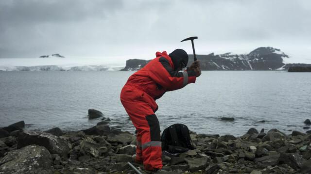 Antarctica ar putea fi verde din nou. Descoperirile care vor schimba regiunea polară - Imaginea 4