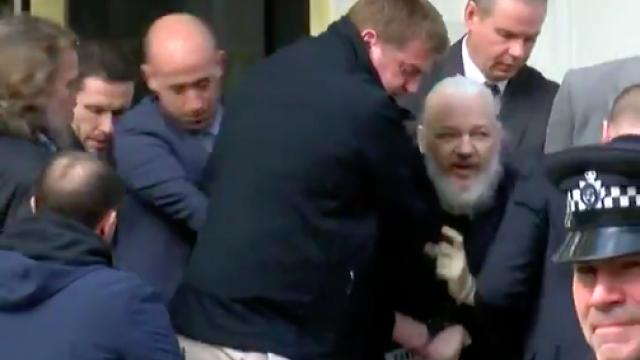 """Reacția lui Julian Assange, acuzat că ar fi murdărit pereţii ambasadei cu """"excremente"""" - Imaginea 8"""