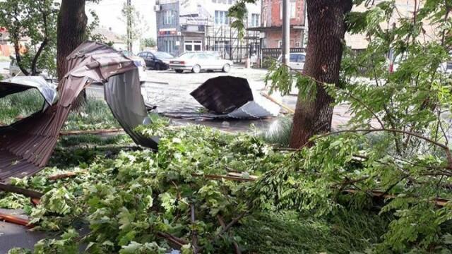 Furtună cu grindină la Timișoara! Vântul a rupt copaci și a smuls acoperișuri. VIDEO - Imaginea 7