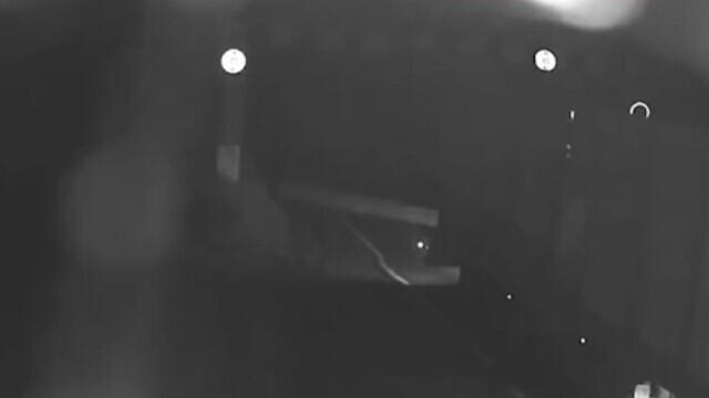 Buștean căzut dintr-un camion, în Suceava. Șoferul a văzut, dar a plecat impasibil