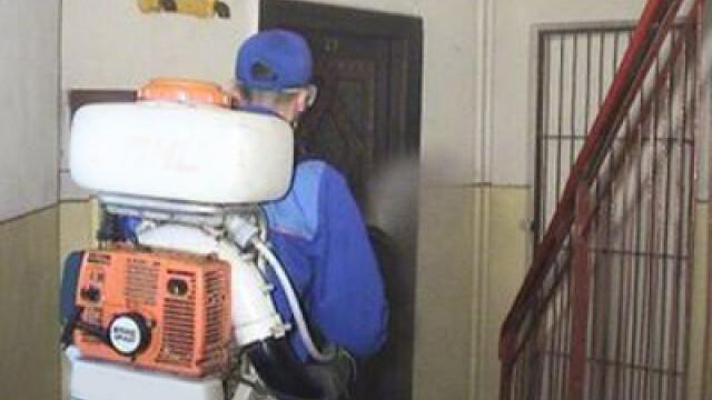 Primaria Capitalei demareaza campania de igienizare si deratizare a Bucurestiului. Ce implica operatiunea