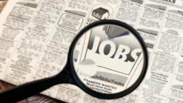 Iti cauti un job in IT, retail sau distributie? Acum ai sanse sa gasesti!