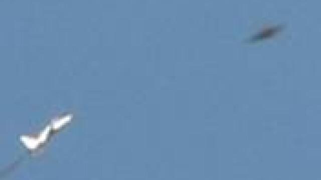 Extraterestru prins in cursa de soareci in Mexic! Uite cazuri din Romania!! - Imaginea 4