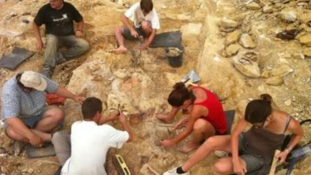 paleontologi, fosile de dinozaur