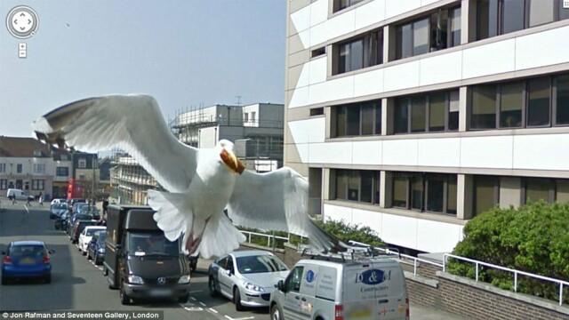 Prostituate, vanzari de arme si alte imagini spectaculoase surprinse de Street View. GALERIE FOTO - Imaginea 5