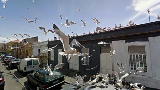 Prostituate, vanzari de arme si alte imagini spectaculoase surprinse de Street View. GALERIE FOTO - Imaginea 6