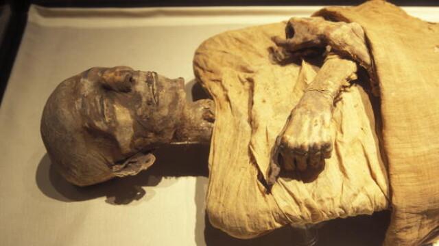 Un baiat din Germania a gasit o mumie in podul casei bunicilor sai