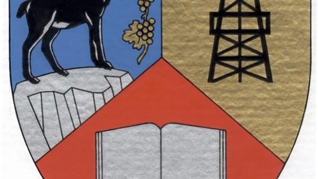 Autoritatile din Prahova pregatesc steagul viitoarei regiuni Muntenia