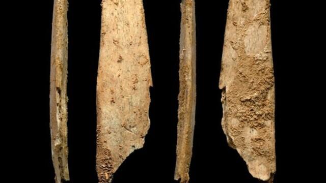 unelte preistorice