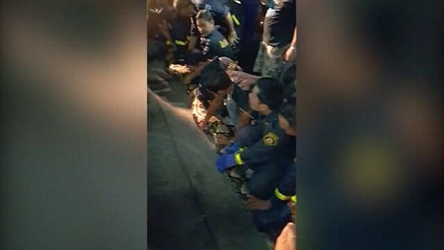 Un piton urias, lung de 8 metri, descoperit in spatele unui restaurant din Bangkok. 17 pompieri l-au carat pe brate. VIDEO