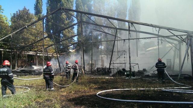 Incendiu la clubul Chaboo din Capitala. Flacari uriase au pornit langa piscina si au distrus un cort. VIDEO - Imaginea 12