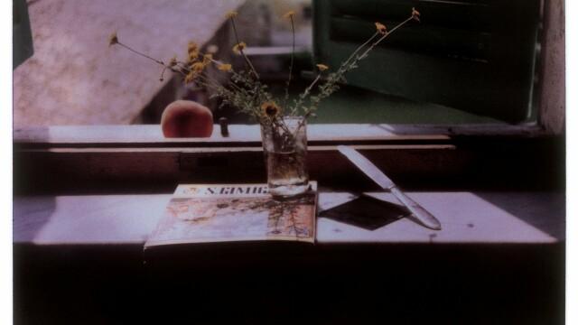 Fotografiile Polaroid facute de celebrul regizor rus Andrei Tarkovski, scoase la licitatie: