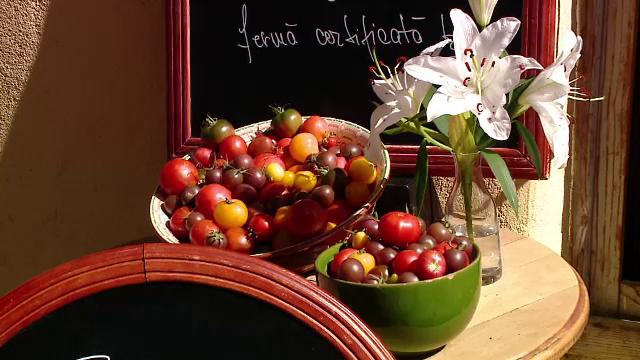 Soluţia inedită a fermierilor din Braşov: roşiile vândute la bistro