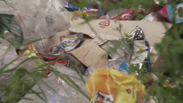 Localitatea din România care de 2 ani nu are contract de salubritate. Ce se întâmplă cu gunoiul