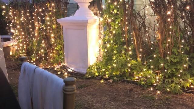 Invitații de la nunta fiului lui Dragnea, întâmpinați de protestatari. Imagini de la petrecere - Imaginea 6