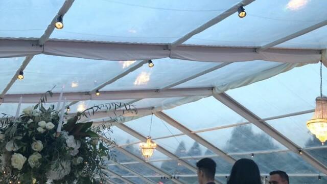 Invitații de la nunta fiului lui Dragnea, întâmpinați de protestatari. Imagini de la petrecere - Imaginea 7