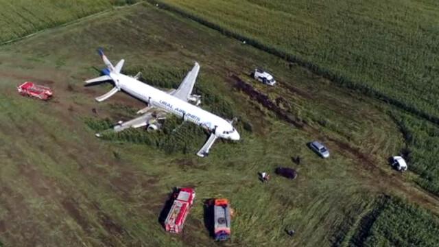 Momentul în care avionul cu 233 de oameni la bord a lovit un stol de păsări. VIDEO