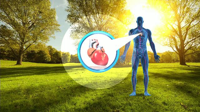 efectul caldurii asupra corpului