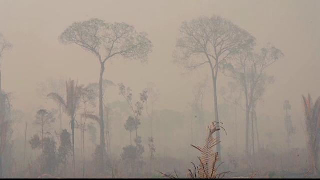 Condiția pusă de Bolsonaro ca să accepte ajutorul pentru stingerea incendiilor din Amazon