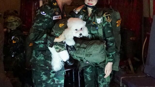 Concubina regelui Thailandei, surprinsă pilotând un avion și trăgând cu arma. Imagini rare - Imaginea 7