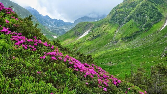 Povestea Transfăgărășanului, șoseaua construită în mai puțin de 4 ani în Munții Făgăraș - Imaginea 3