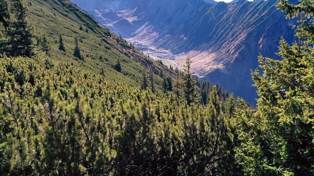 Povestea Transfăgărășanului, șoseaua construită în mai puțin de 4 ani în Munții Făgăraș - Imaginea 4