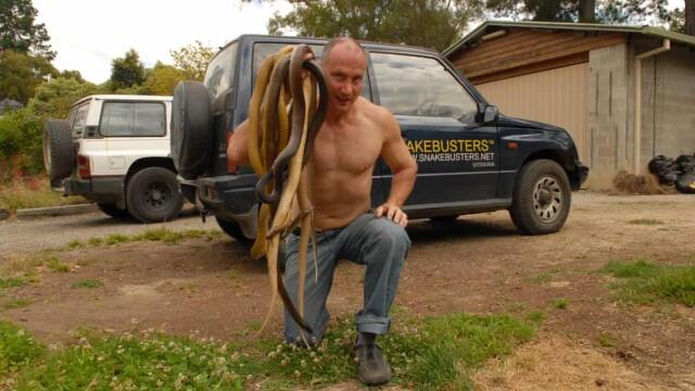 vanatorul de șerpi snakebusters