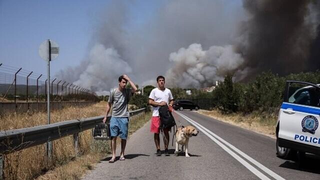Teroare în Atena. Mai multe case au ars, două suburbii au fost evacuate. Valul de căldură a atins cote maxime - Imaginea 1