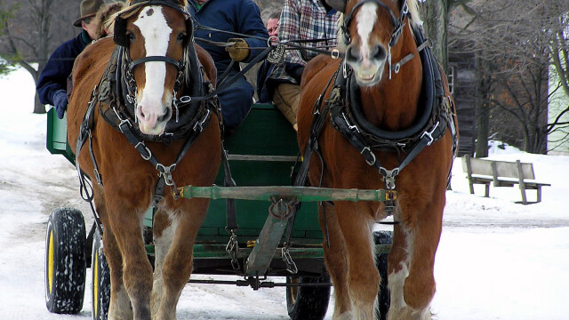 Sarbatori de iarna in Romania, la preturi de criza! Vezi oferta!