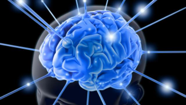 Amintirile urate pot fi sterse fara droguri