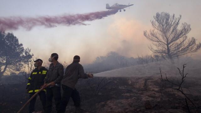 Dezastru in Israel din cauza incendiului in care au murit 42 de oameni
