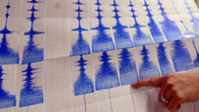 Cutremur cu magnitudinea 3,2 pe scara Richter, produs luni in Vrancea