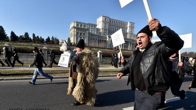 Ziua in care ciobanii au navalit in Palatul Parlamentului si i-au luat la rost pe alesi. Cum va fi modificata Legea Vanatorii - Imaginea 3