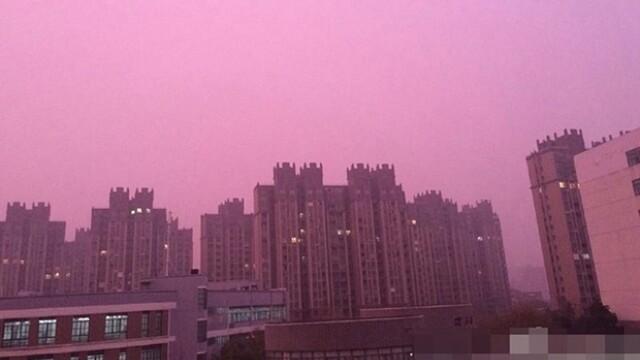 Smog roz