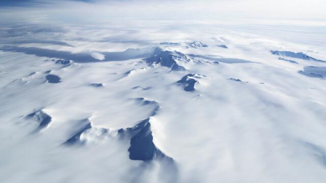 sunete antarctica