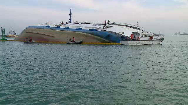 La trei săptămâni de la dezastrul din Portul Midia, 14.000 de oi moarte încă se află pe navă