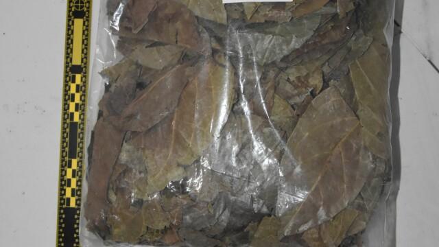 IMAGINI de la ședințele unde se consumau droguri ayahuasca. Ce ustensile se foloseau - Imaginea 10