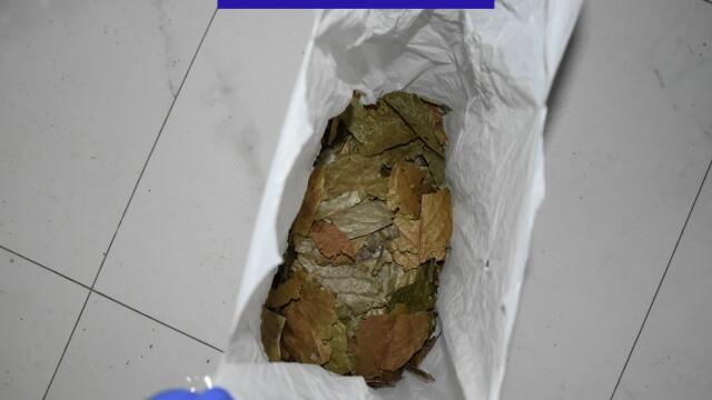 IMAGINI de la ședințele unde se consumau droguri ayahuasca. Ce ustensile se foloseau - Imaginea 9