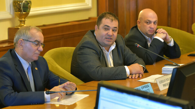 Deputații din Comisia de Muncă au respins OUG privind majorarea alocațiilor copiilor