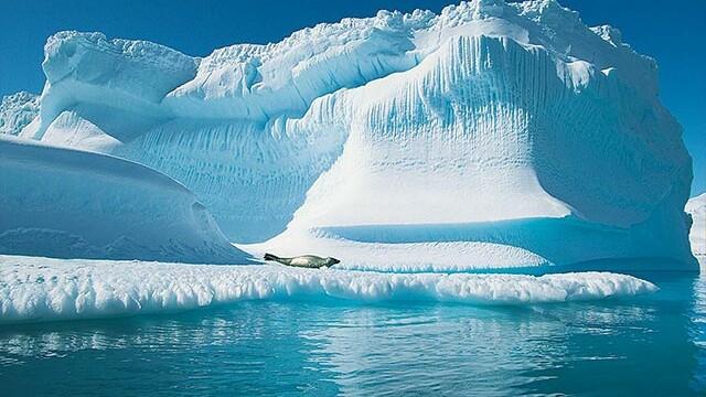 Polul Nord a fost tropical in urma cu multe milioane de ani