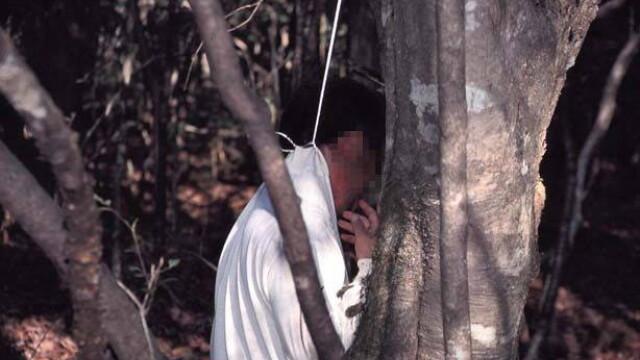 IMAGINI TULBURATOARE! Padurea SPANZURATILOR exista! ... In Japonia - Imaginea 9