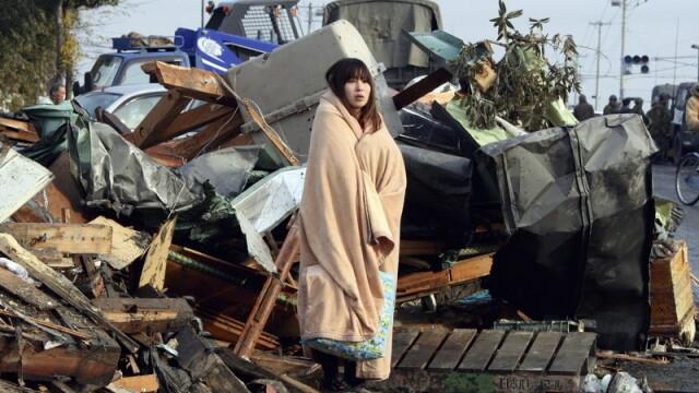 Japonezii, cu ochii pe comportamentul animalelor. Cum vor sa detecteze din timp tsunami-urile