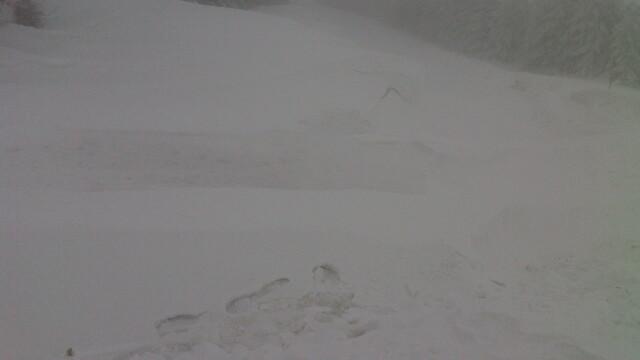 FOTO. Zeci de turisti, evacuati de salvamontisti, dupa ce au ramas blocati pe Muntele Semenic - Imaginea 3
